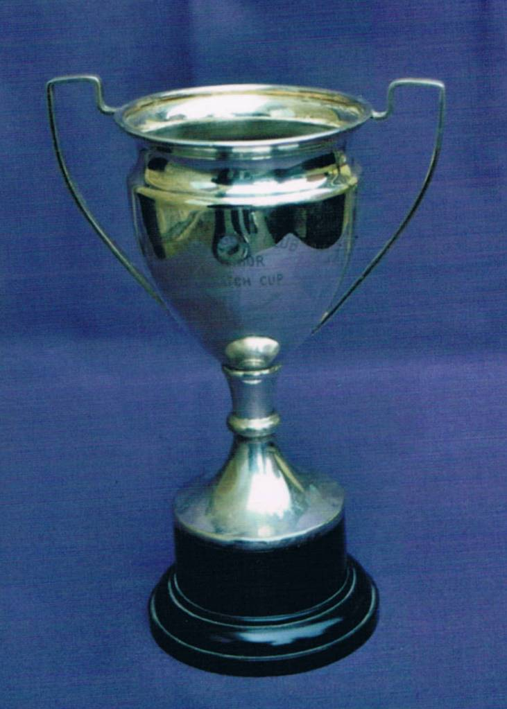 Picture of Junior Cup